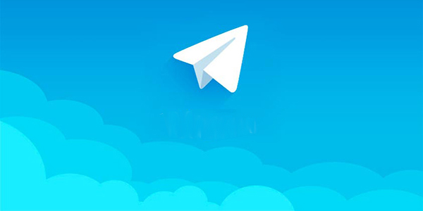 telegram Turin group