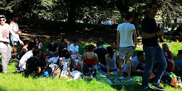 picnic multilingue 12/07